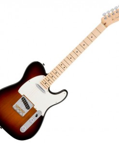 Fender American Pro Telecaster Electric Guitar Maple Fingerboard Various Finishes