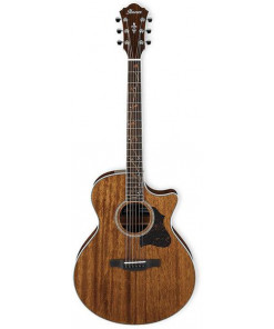 Ibanez AE245 NT Acoustic Electric Guitar