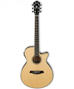 Ibanez AEG8TNE Classical Acoustic Electric Guitar Natural