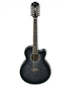 Ibanez AEL2012 Acoustic Electric 12 String Guitar TKS