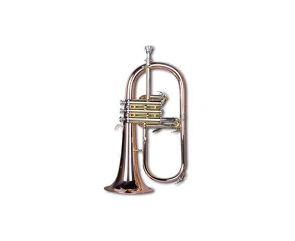 Mason AL309P Flugelhorn Bb Standard with Case