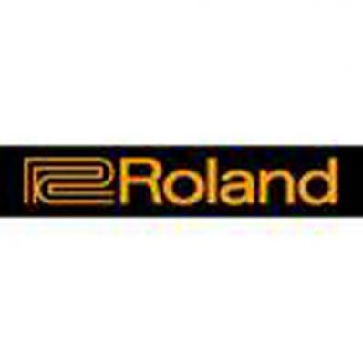 Roland REPLACEMENT POWER SUPPLY IS THE PSB-230EU