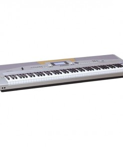 Medeli SP5500 Stage Piano