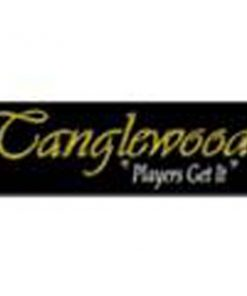 TANGLEWOOD SUNDANCE PRO DREADNAUGHT EQ