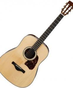 Ibanez AVD1 Acoustic Guitar