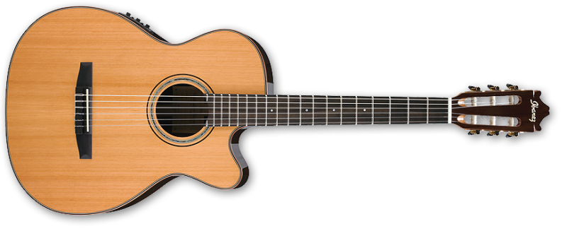 Ibanez GM500CE Classical Guitar